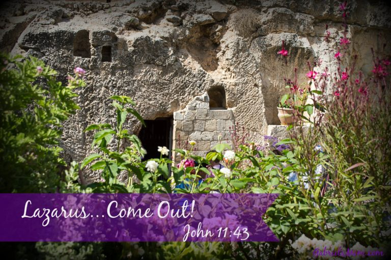 Fifth Sunday of Lent Reflection